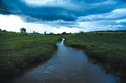 sungai kebun